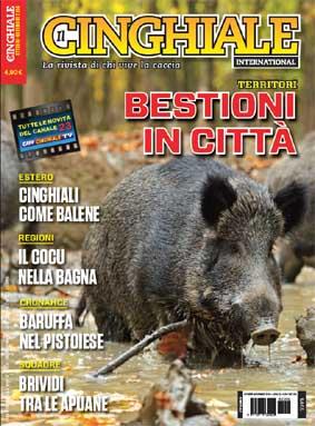 Cinghiale International Ott Nov 2014